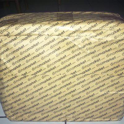 Paket kiriman dari Dinomarket - Databank backpack hardcase